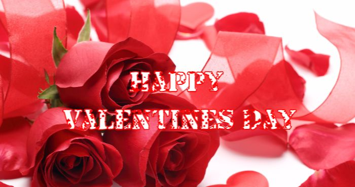 Happy Valentines Day For All
